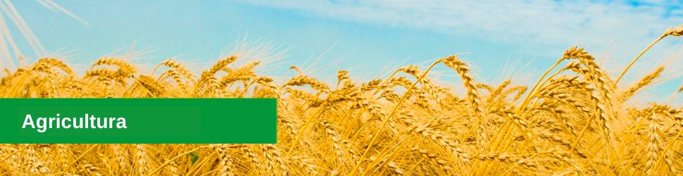 Análises em agricultura